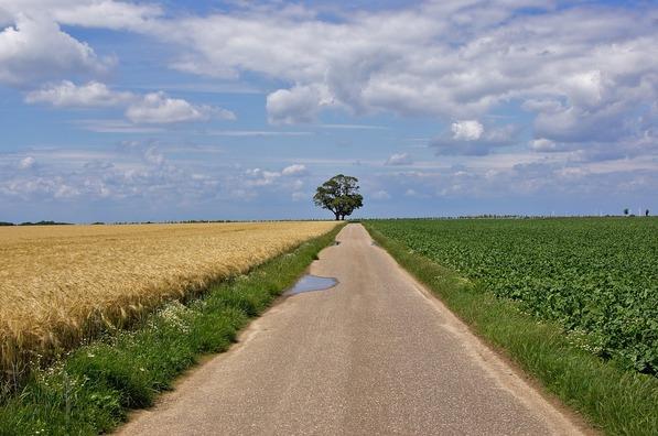 landscape-1167968_960_720