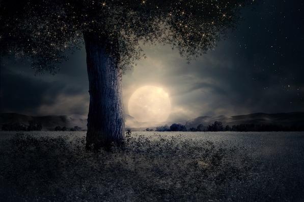 night-2539411_960_720
