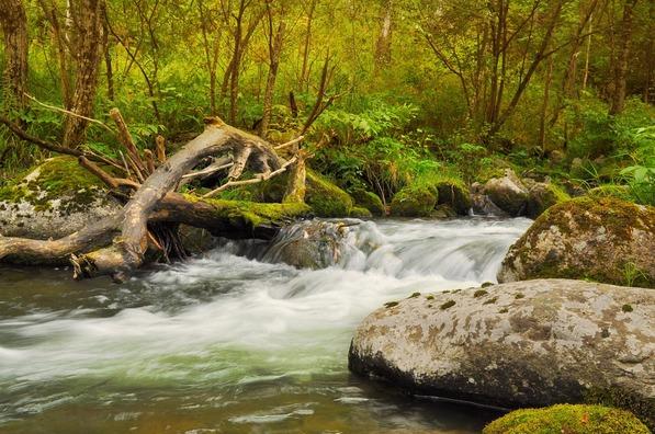 river-72770_960_720