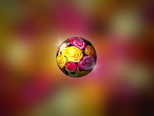 roses-2328047_960_720