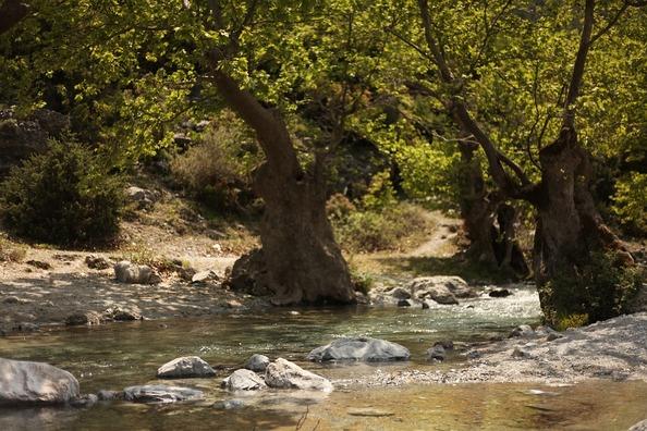 river-3571411_960_720