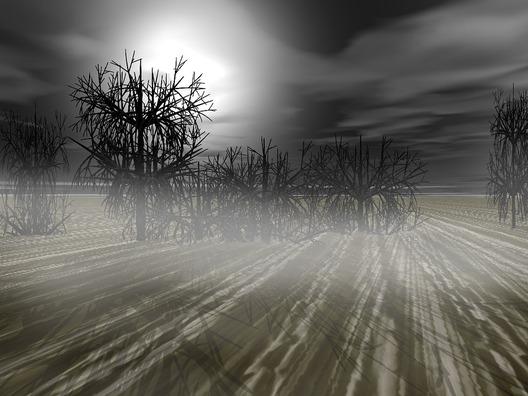 tree-1807769_960_720