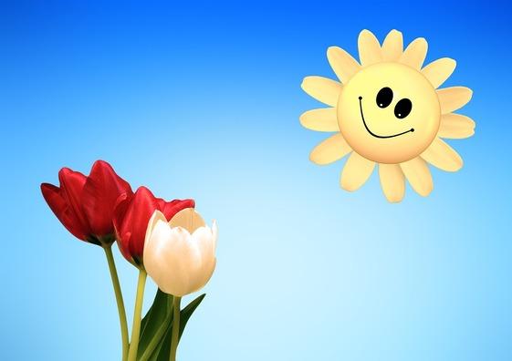 tulips-3227565_960_720