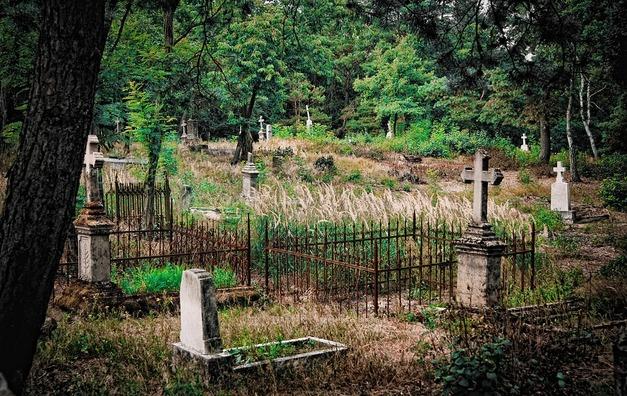 cemetery-3563136_960_720