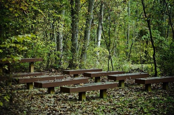 benches-469274_960_720