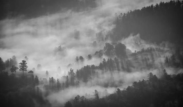 foggy-1149180_1920