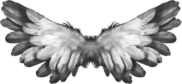 angel-1184180_960_720
