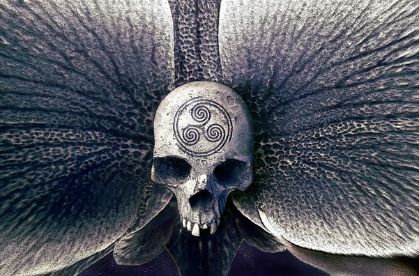 skull-2208861_960_720