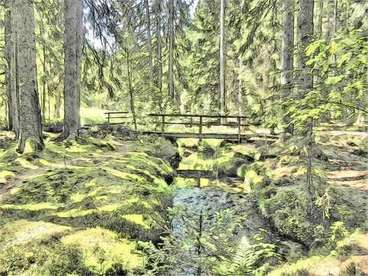 magic-forest-367470_960_720