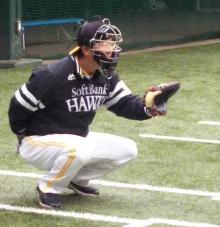 tatsukawa