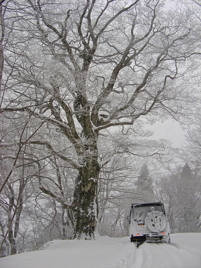 雪上アタック1