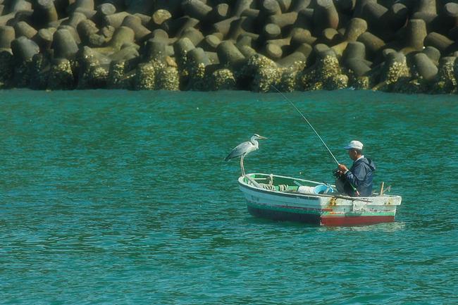 釣り人とサギ