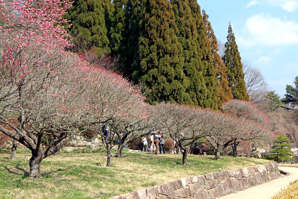 12三景園�IMG_4918