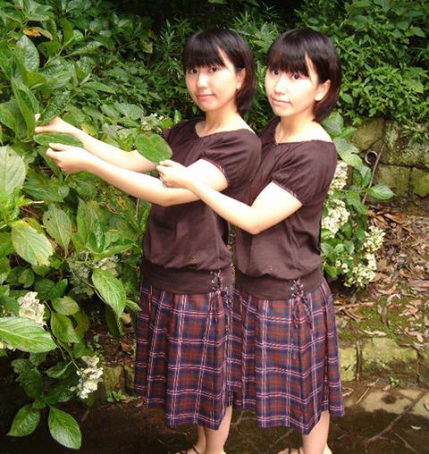 twins1281