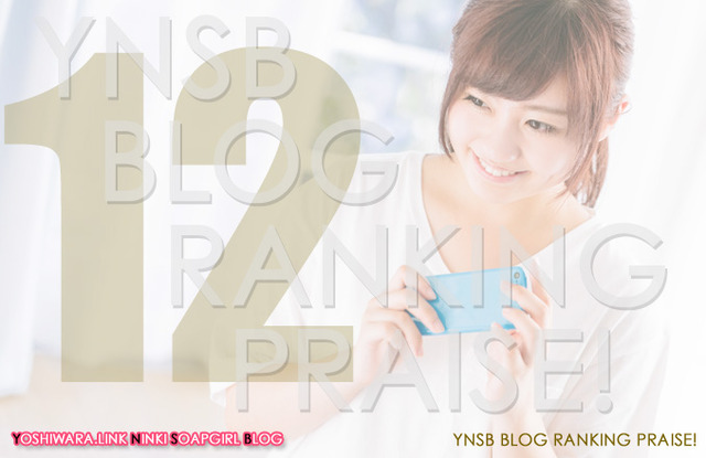 Blog Ranking Praise★201612の画像