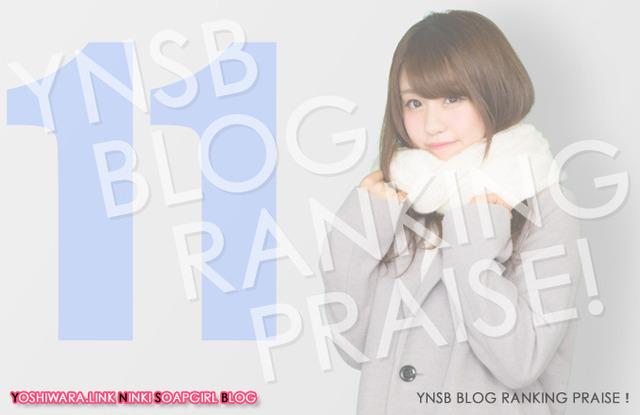 Blog Ranking Praise★201611の画像