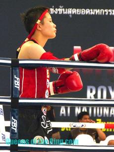 Wang Mengjing