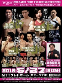 SANEI FIGHT PROBOXING