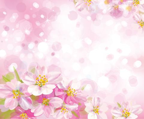 sakura-back015