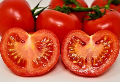 tomatoes-3170812__480