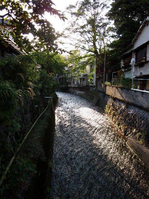山田湯裏手の川