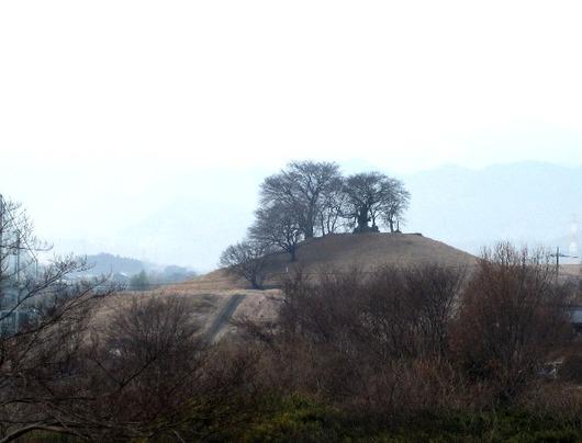 白石稲荷山