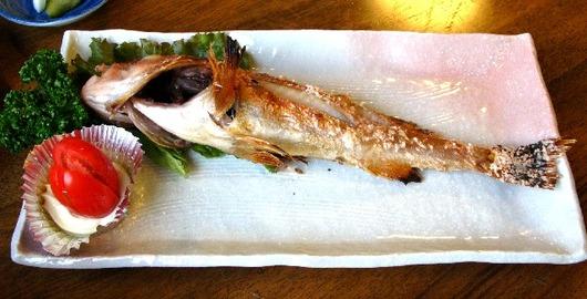 焼き魚かさご
