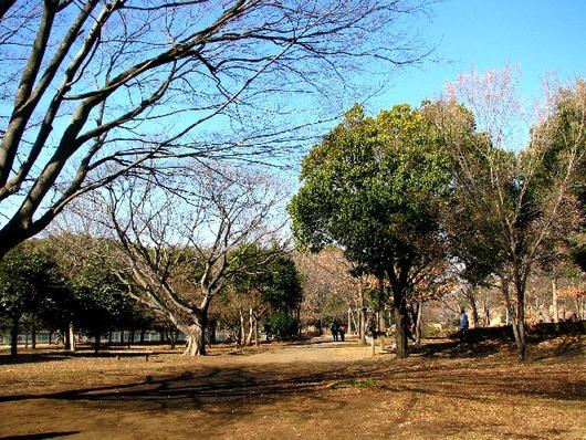 引地川公園ふれあいの森