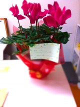 flower頂き物101123