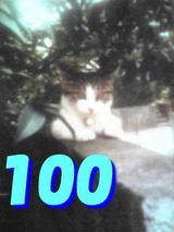 a02c0ca2.jpg