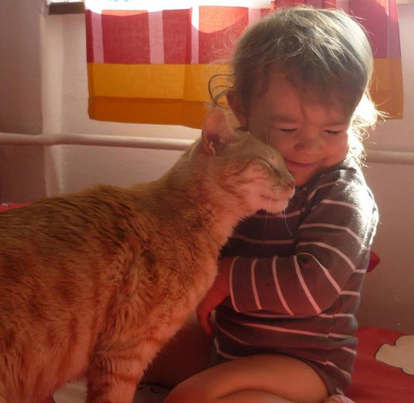 ペットは大切な家族!犬や猫と人間の子供の画像 (29)