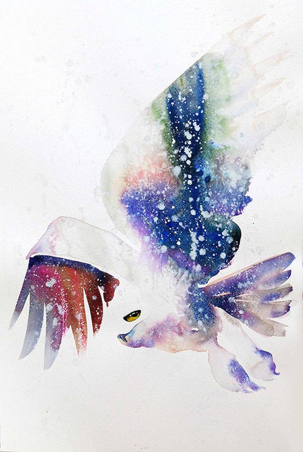 フクロウやワシなどの鳥類を描いたカラフルな水彩画 (6)