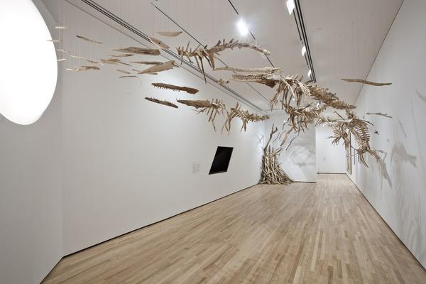流木彫刻!絶滅した淡水イルカ、ヨウスコウカワイルカを描く (2)