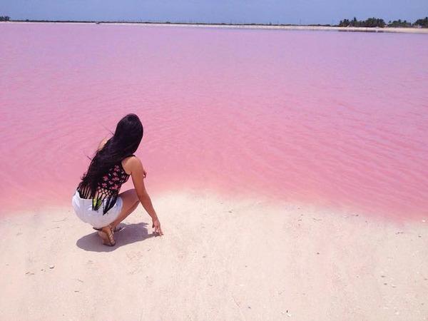 メキシコの塩湖が美しいピンクでミラクルファンシーだよー (5)