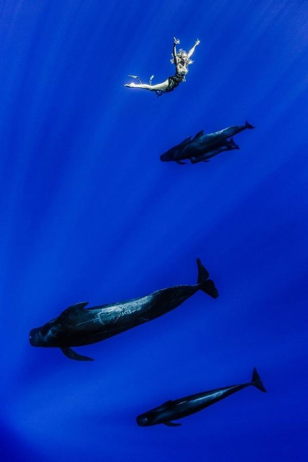 ザトウクジラとモデルのダイバーが一緒に海中を泳ぐ 4