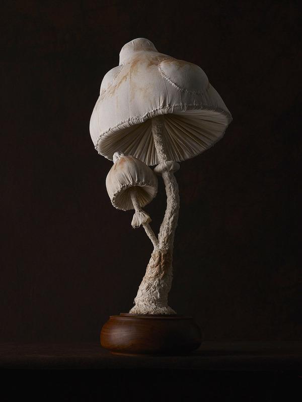 おいしそう?ヴィンテージな生地で作られたリアルなキノコ彫刻 (6)