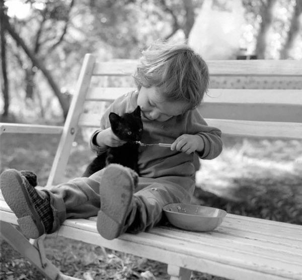 ペットは大切な家族!犬や猫と人間の子供の画像 (65)