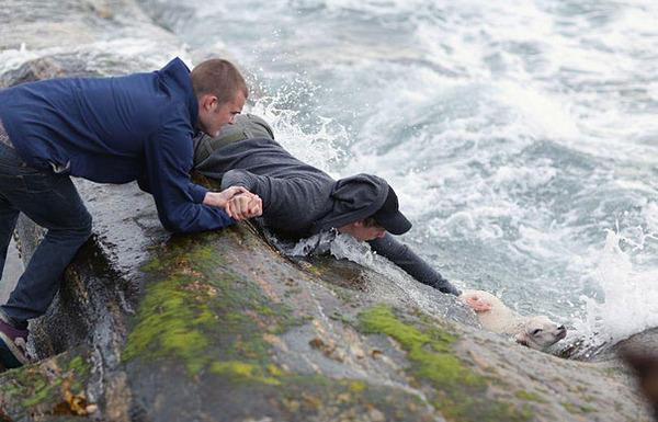 #7 1 2人のノルウェーの青年が溺れている子羊を救う