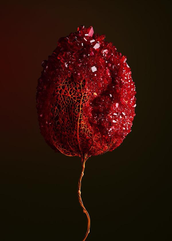 花と結晶。植物と鉱石を融合した芸術作品 (5)