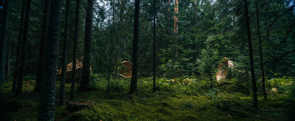 癒し効果がきっと一杯!森の音を聴く超大きなメガホン (9)