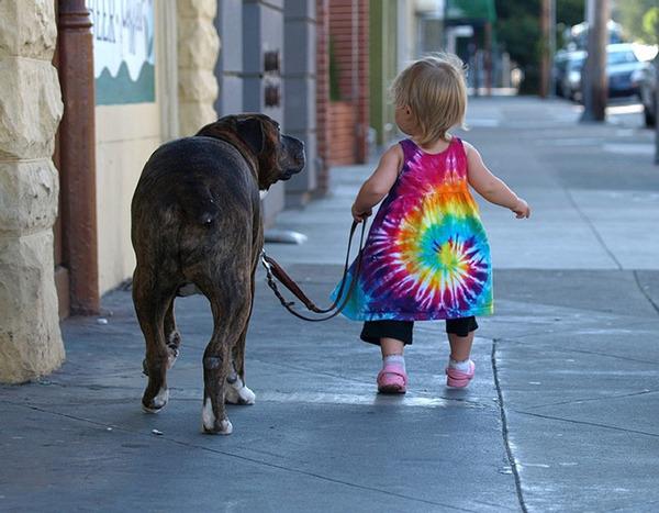 ペットは大切な家族!犬や猫と人間の子供の画像 (54)