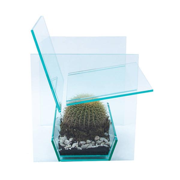 お尻むずむず。透明なアクリルの椅子『サボテンチェア』 (1)