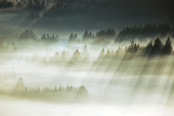 陽が差し込んだポーランドの景色13