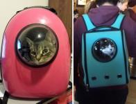 一緒に宇宙行っちゃう?宇宙服みたいな猫用バックパック!