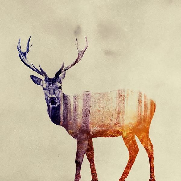グラデーションの鹿がかっこいい