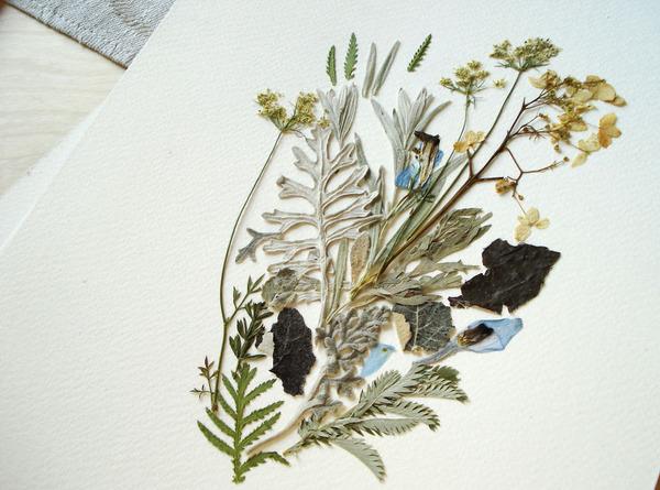 葉や花で自然を描く!植物を素材にした押し花の絵 (5)