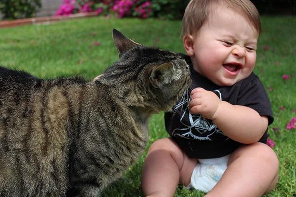 ペットは大切な家族!犬や猫と人間の子供の画像 (16)