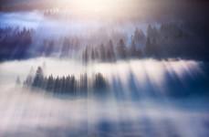 太陽の光が射し込む神秘的な風景が綺麗。ポーランドのベスキディ