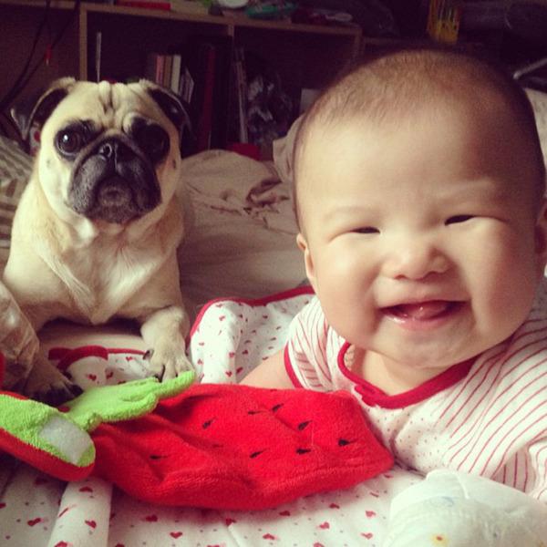 ペットは大切な家族!犬や猫と人間の子供の画像 (57)