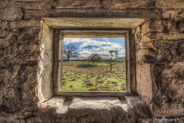 廃墟の部屋の窓から覗く風景 6